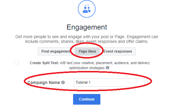 fb paid campaign