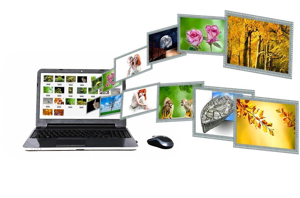 social media plugin for wordpress
